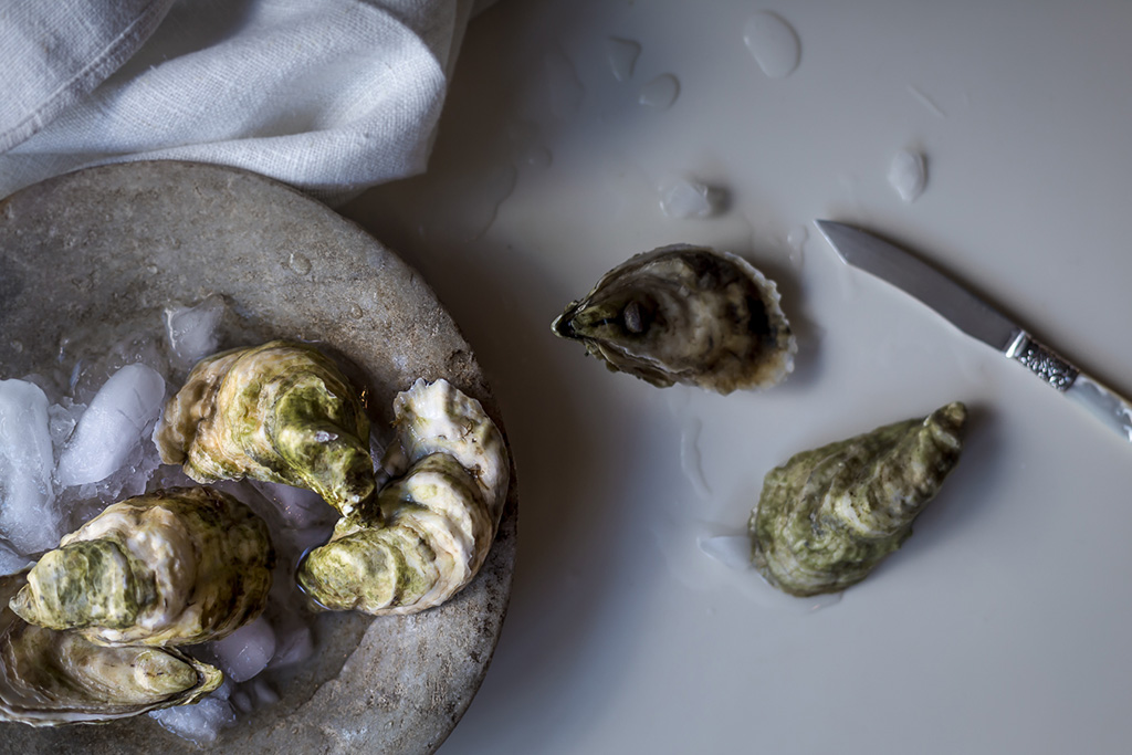 wolf_gourmet_oysters_unshucked
